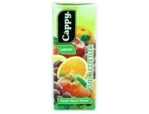 Cappy 1/5 meyve suyu (27'li)